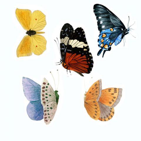 """Водорастворимая картинка """"Бабочки ВК015"""""""