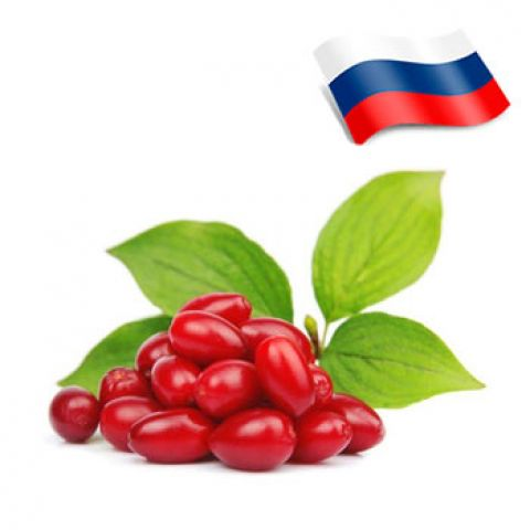 Отдушка барбарис россия