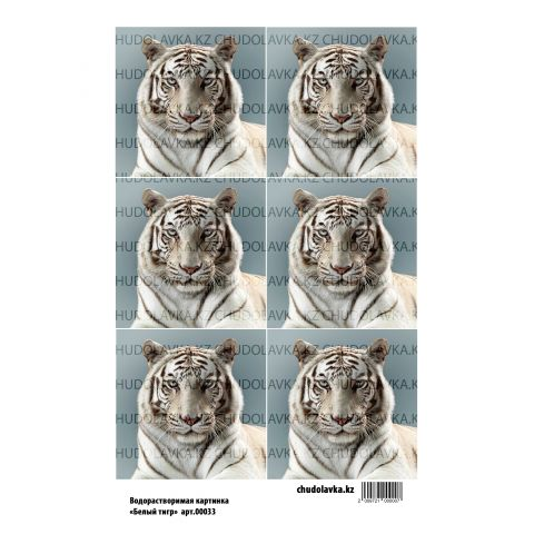"Водорастворимая картинка ""Белый тигр ВК033"""