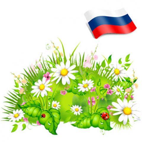Отдушка цветочная поляна Россия