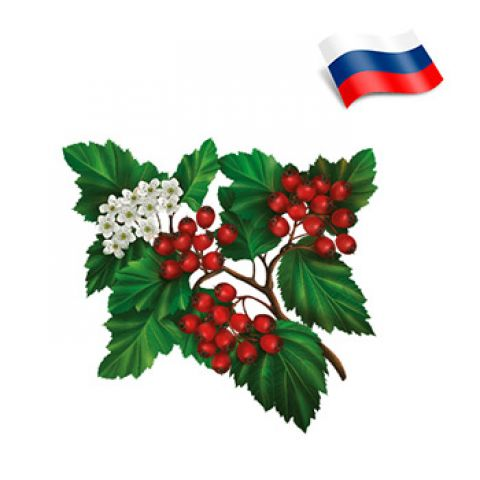 Отдушка цветы боярышника россия