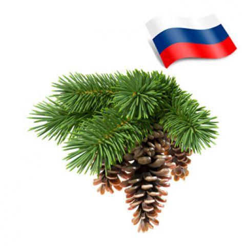 Отдушка хвойная россия