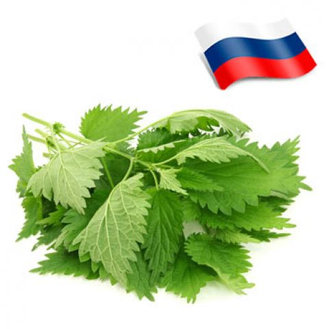 Отдушка крапива россия
