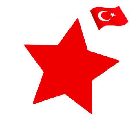 Гелевый краситель красный (пр.Турция)