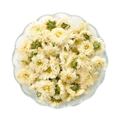Сухоцветы хризантемы