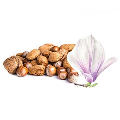 Отдушка магнолия и орехи
