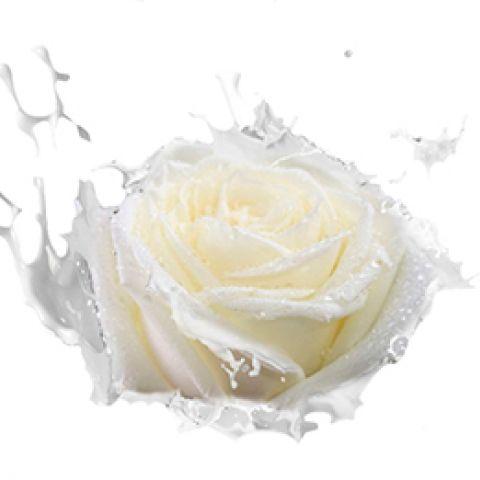 Отдушка молоко и роза