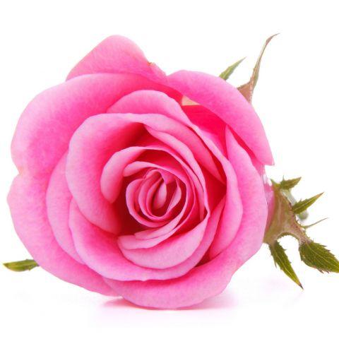 Отдушка Царская Роза (Франция) 30 мл.