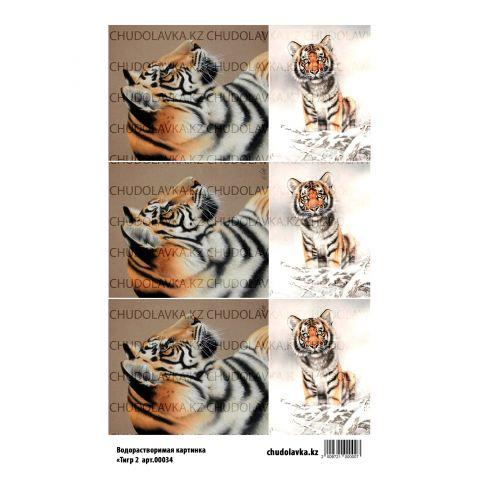 """Водорастворимая картинка """"Тигр 2 ВК034"""""""