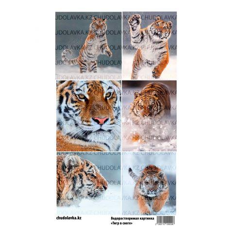 """Водорастворимая картинка """"Тигр в снеге ВК027"""""""