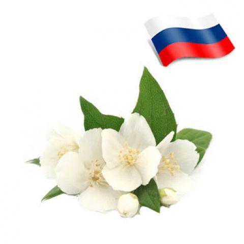 Отдушка жасмин россия