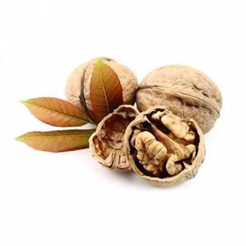 Жирное масло грецкого ореха